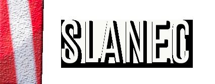 Slanec Dressur Mobile Retina Logo